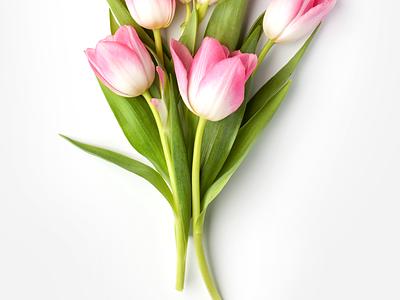 Flower eCommerce App - Daily UI Challenge #14 flowershop ecommerce app ui  ux design ui  ux interaction iphone x inspiration ecommerce ecommerce design minimalist app design minialista ui design detail web design ios ux design ui design ux