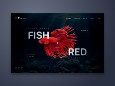 Fish Red Web UI Design