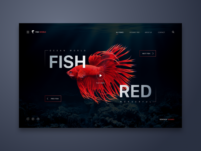 Fish Red Web UI Design fish landing page ui  ux ui  ux design interaction inspiration logo minialista design ux design detail minimalist web design ui ux ui design