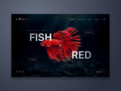 Fish Red Web UI Design fish landing page ui  ux ui  ux design interaction inspiration logo minialista design ux design detail minimalist web design ui ux ui design
