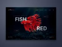 Fish Red Web UI Design