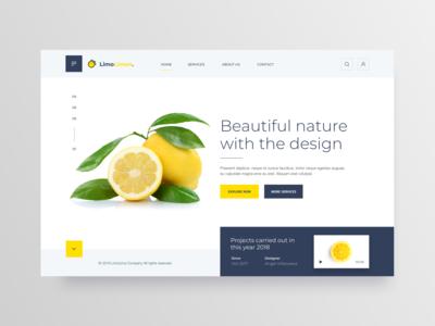 Web Design UI - Landing Page
