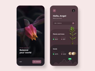 Dashboard Plants 🌱App Concept