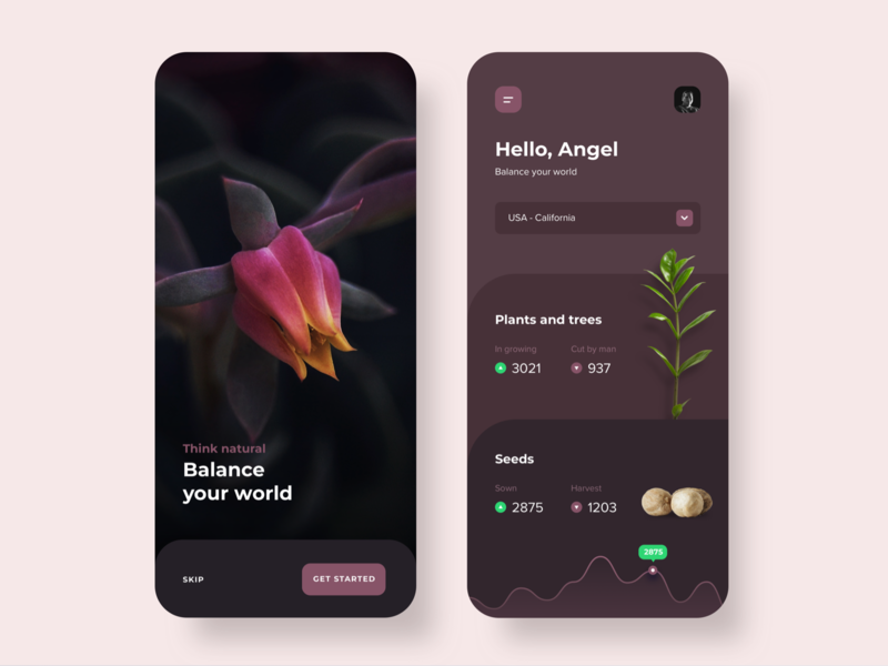 Dashboard Plants 🌱App Concept plants user interface detail ui  ux dash board interaction inspiration minimalist ios ui app design ux design ux ui design dashboard design dashboard app