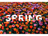 Typography - Seasons 3