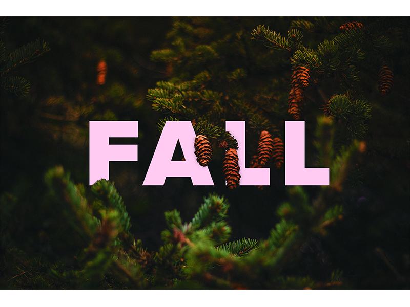 Typography - Seasons 4 dark acorns fall seasons typography graphic design