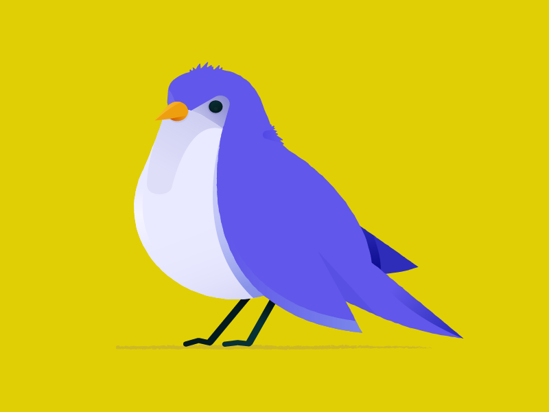 Little Birdy animal cute illustration bird