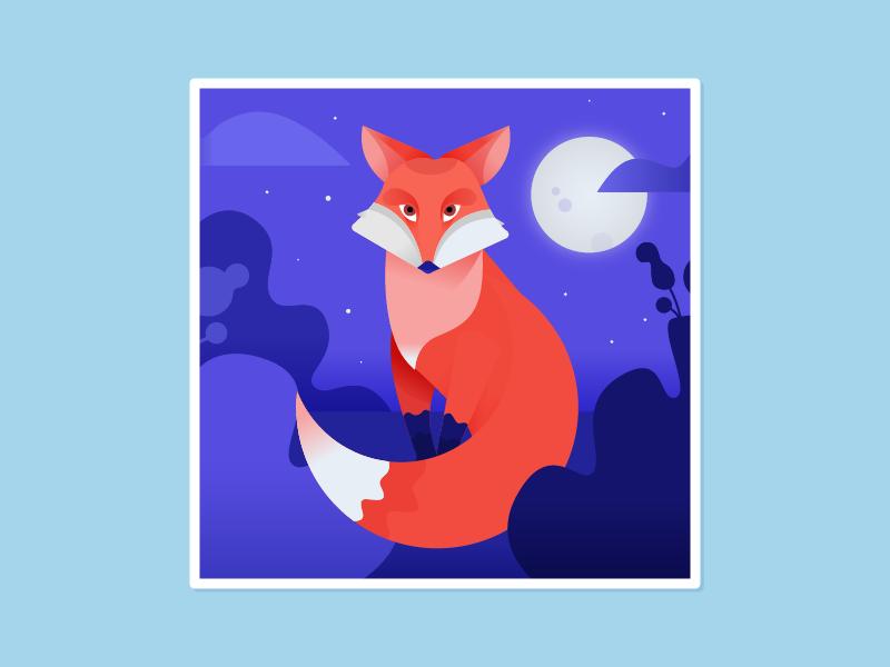 Mr Fox (and a process video) night childrens book animal illustration fox