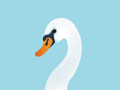 Drawing is hard procreate grain side profile animal bird illustration drawing swan