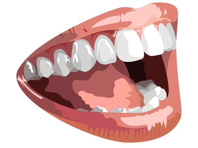 Vector open mouth in graphic style bite smile dentist white live people human females female cosmetic facial face realistic realism tooth teeth tongue mouth lips lip