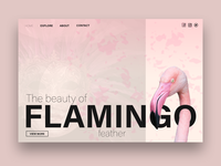 Flamingo Web Design