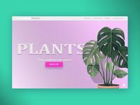 PLANTS WEBSITE CONCEPT - 2018