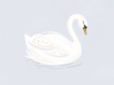 Swan Illustration bird nursery illustration swan
