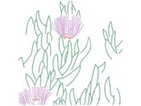 Purple plant illustration