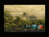 Landing - Rainforests