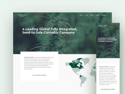 Franchise Cannabis Homepage medicine medical organic company medical marijuana weed cannabis web website landing ui uxui