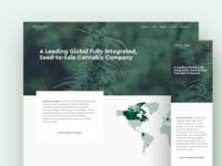 Franchise Cannabis Homepage