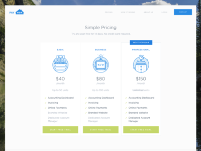 Payhoa Pricing Page system management lines line page website web pricing plans icons illustrations managment property landing illustration uxui