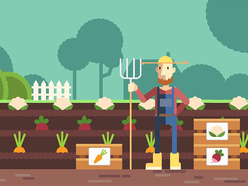 Farmer illustration vector art children illustration motion infographic illustrator vector digital art illustration