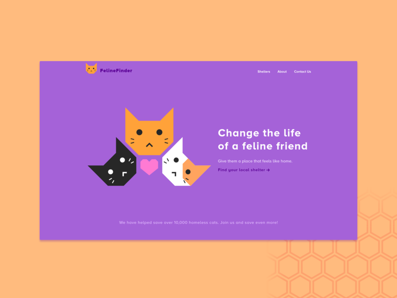 Landing Page - Daily UI 003 shelter cat cats vector web design branding flat design daily ui web ui minimal