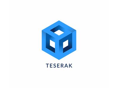 Teserakt Logo design branding technology it infinity tesseract logotype logo