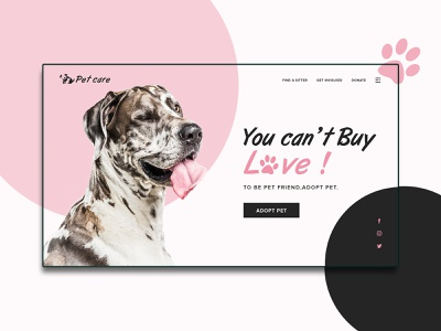 Pet care - Home page landing page petcare pet care pet typography web design branding illustration homepage ui ux website