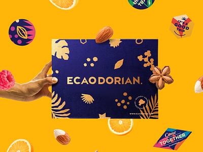 Ecaodorian Gift Pack. ux ui art pack illustration graphic design typography type design branding vector brand logo