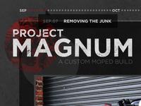 Project Magnum - Header/Logo/Tooltip