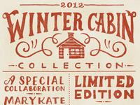 Winter Cabin Flyer