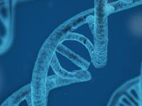 Epsilon Theory DNA Banner