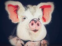 P I G  |pig| [Sus Linnaeus, family Suidae Suinae.]