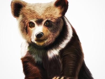 Grizzly Bear Cub /ˈɡrizlē/•/ber/•/kəb/