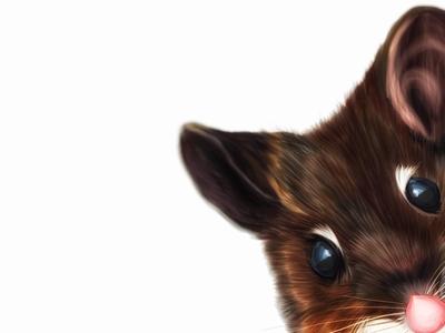 Illustration: Mouse /maʊs/
