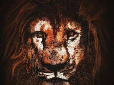 Illustration: Lion /ˈlʌɪən/