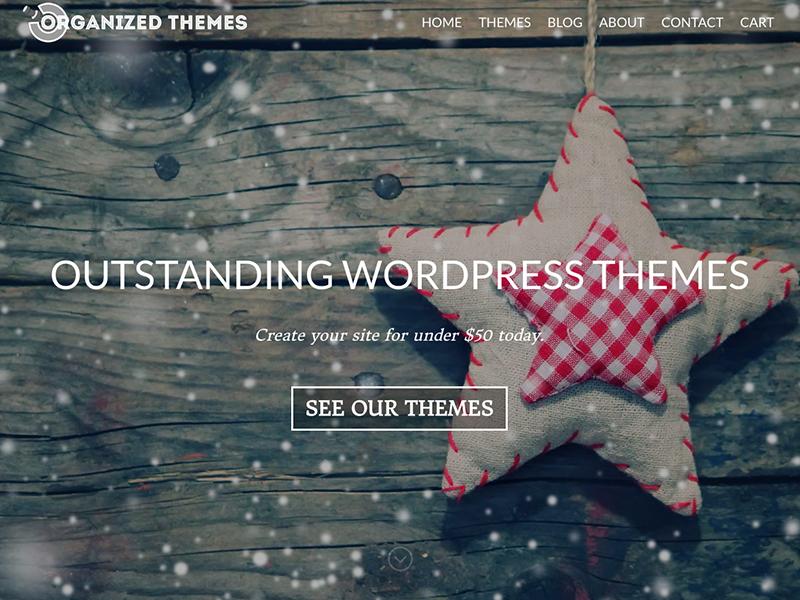 New Store wordpress