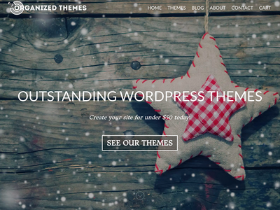 New Store wordpress
