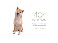 Doge 404