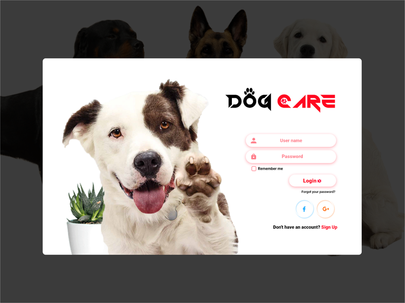 Dog Care web site Login (Light theme) web care dog theme light xd unique design