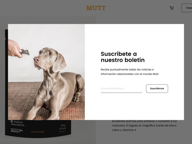 Newsletter ecommerce shopify website subscription modal dog pet food mutt white simple newsletter web