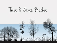 19 Nature Silhouettes Trees & Grass Brushes