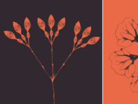23 Free Floral Brushes