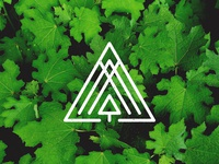 Upgreen Icon