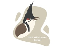 Bird Series - 2 - Red Whiskered Bulbul