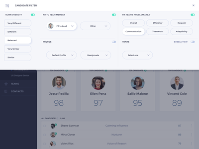 HR Dashboard - candidate profile filter reactive ui web app design uiux user interface dashboard hr tools hr app web app