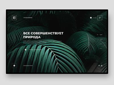 Kora Phytodesign design branding corporate branding ux ui webdesign