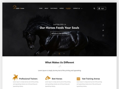 Stable Horses Website