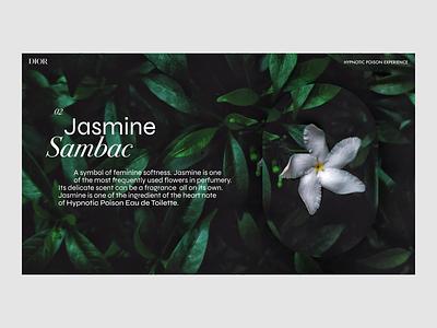 Dior - Hypnotic Poison / ingredients interaction graphicdesign ux ui interface design webdesign dior