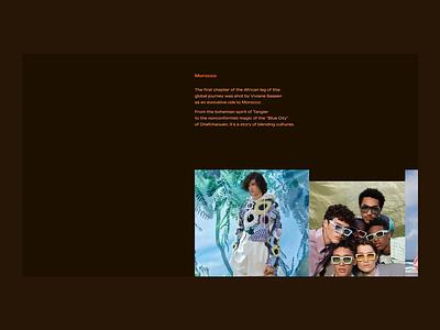 Promo site concept for Louis Vuitton | Photo Gallery animation landing page interface design website web ux ui promo site
