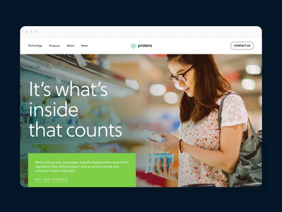 Protera Web Design brand design web design identity typography website web branding design company branding
