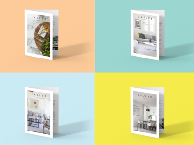 Evolve Branding photoshop colorscheme color font identity brand typography illustrator cc company design logo booklet branding design brand assets branding agency branding